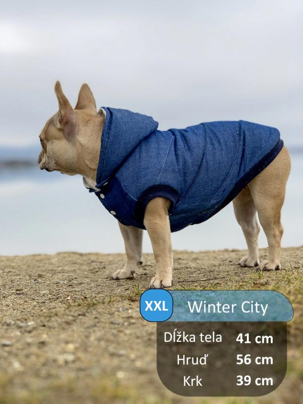 WINTERCITY_GLORIA2