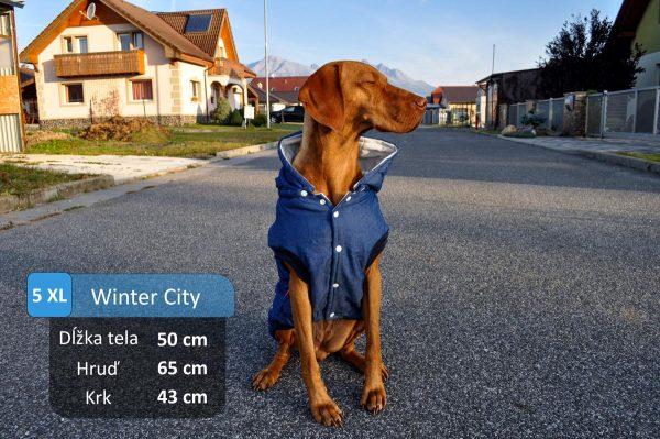 winterCITY_Meggie3